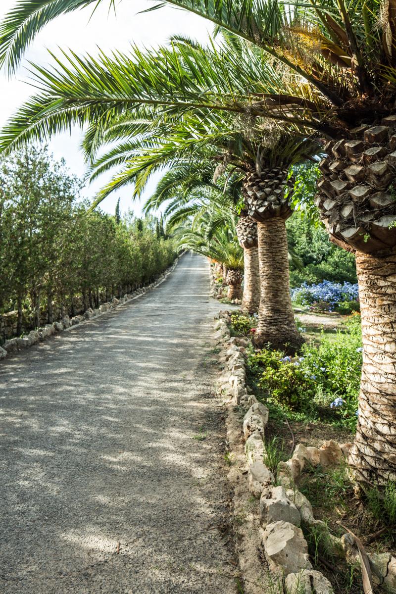 Finca Mallorca Luftansicht--3